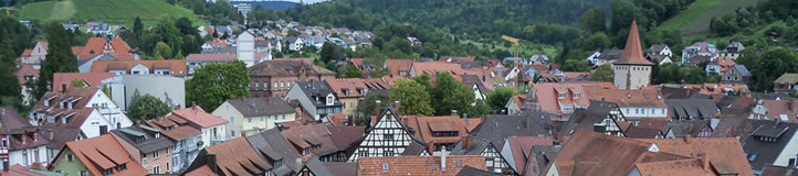 nglish language Black Forest day tour
