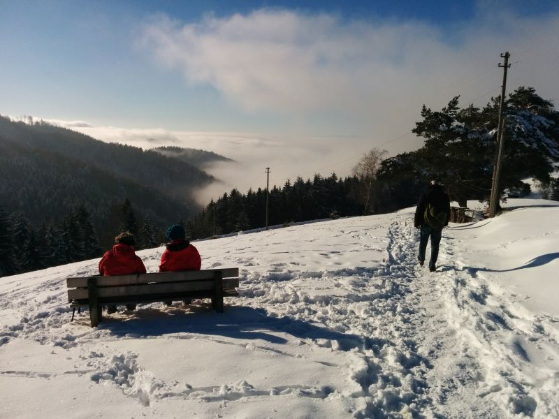black forest winter tours