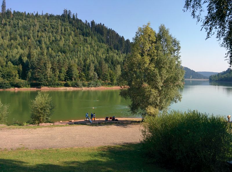 black forest lake