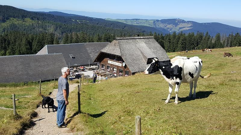 Best Of The Black Forest