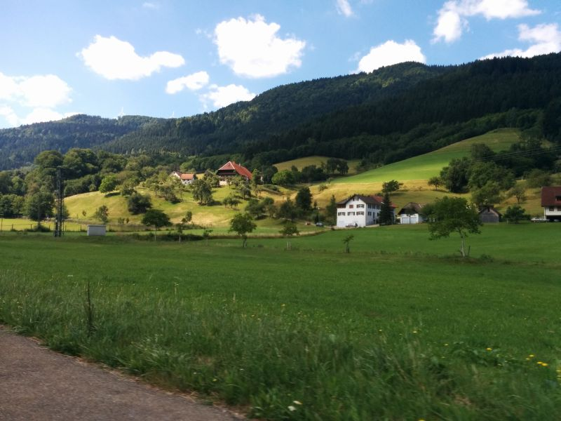 Black Forest Day Tour from Frankfurt