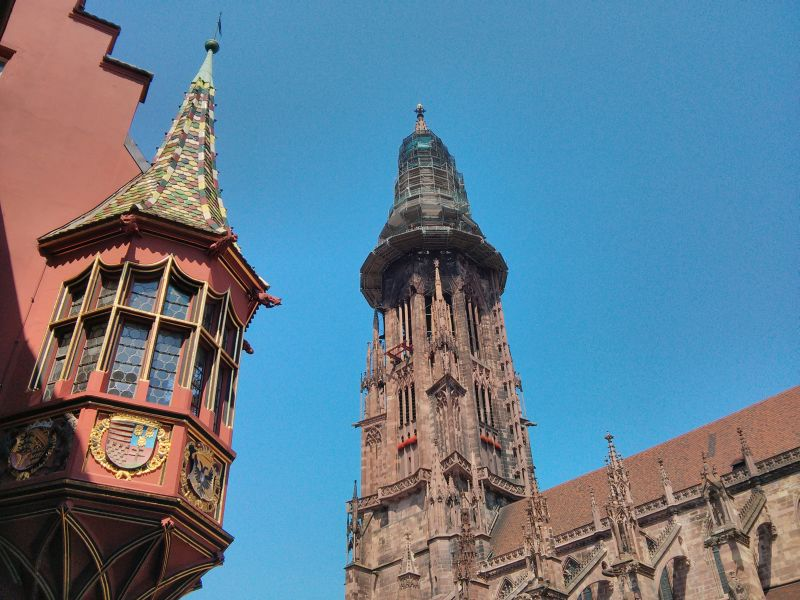 Looking up in Freiburg
