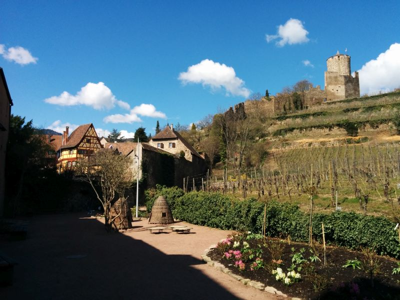 old castles in Alsace