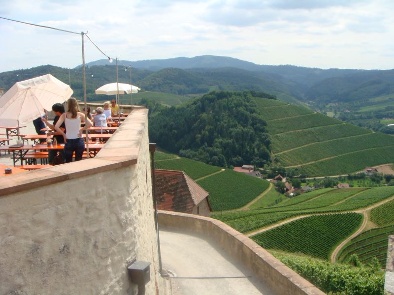 view onto the vineyards from the castle