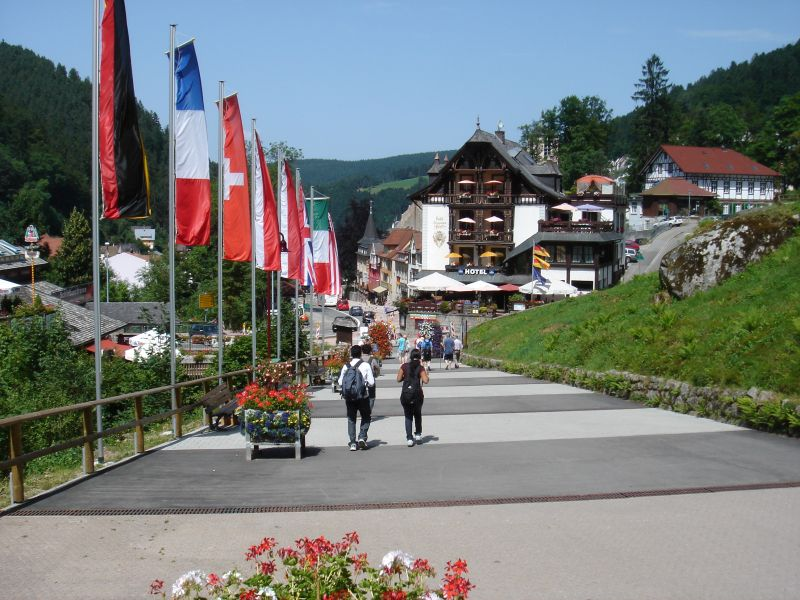 View onto Triberg